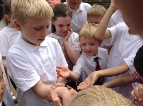releasing the butterflies with Year 4.