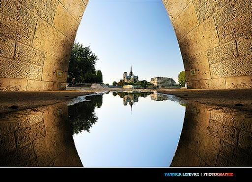 Reflection - reflected symmetry
