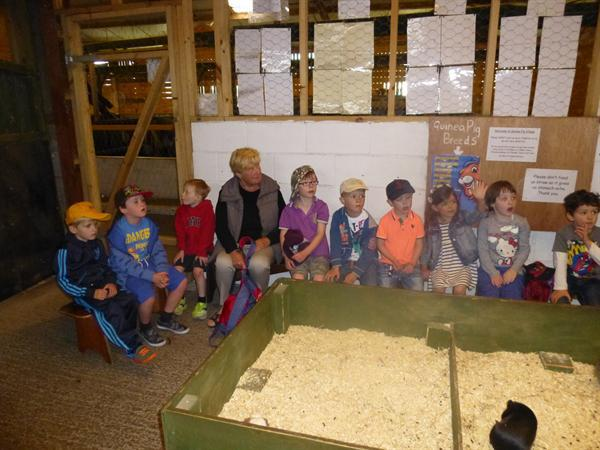 our fantastic day at Farmer Teds!