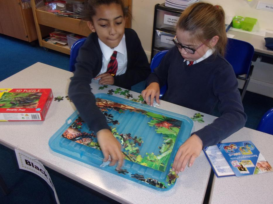 A tricky jigsaw that made our eyes see double!