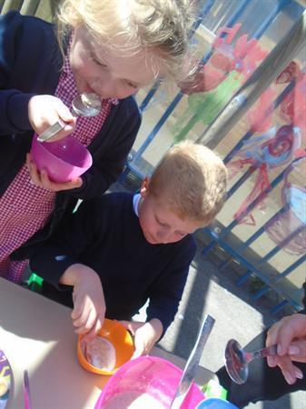 Tasting the bears' porridge