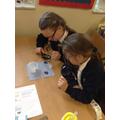 Developing the essential skills of scientific enquiry