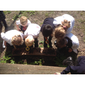 We enjoyed looking for mini-beasts and signs of spring in our outdoor adventure playground