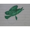 Timeo's shark