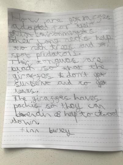 Finn's Writing.jpeg