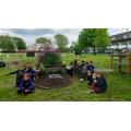 Forrest school-04.05.2020