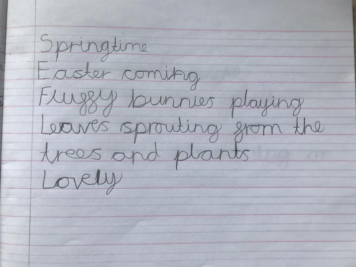 Lily's Spring Cinquain Poem.jpg