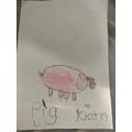 Kiarn's pig!