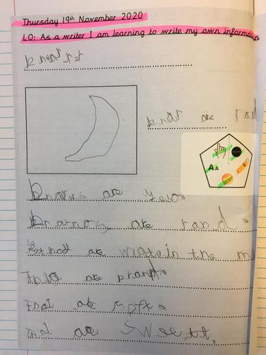We have been learning about non fiction information texts.