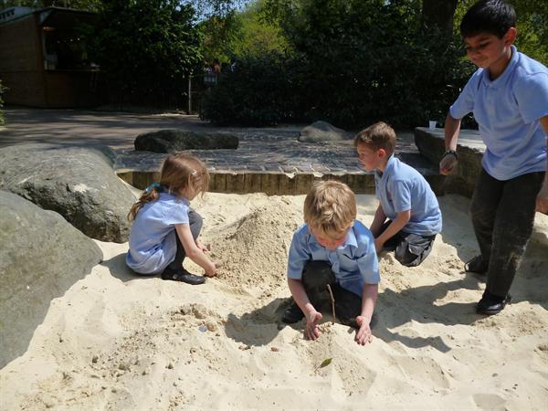 St James's Park playground