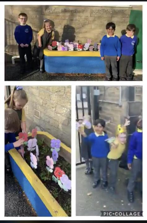 We made red poppies for the soldiers and purple for the animals 💜❤️