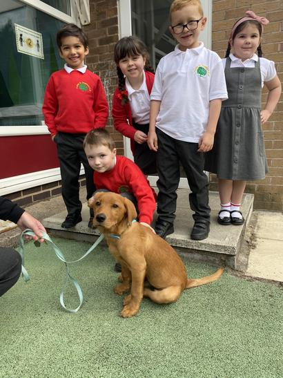 We had a cuddle with our school puppy, Herbie!