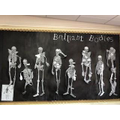 our group work in building our own skeleton body and labelling with scientific bone names