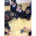 We watched the dye change the colour of the eggs