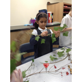 We helped make the Advent wreath