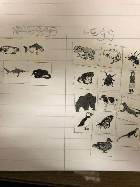 Sorting animals based on a criteria