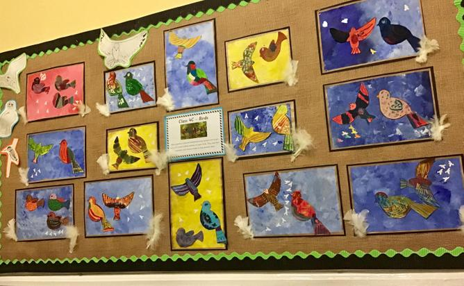 4c made these striking bird pictures.