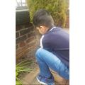 Rayan planting some seeds