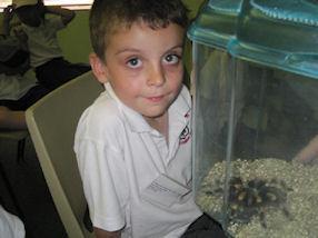 Looking at a real tarantula!