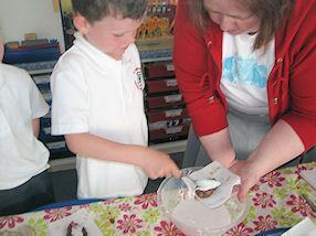 We made chocolate diva lamps. They were yummy!