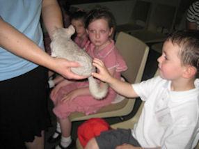 The children met a chinchilla.