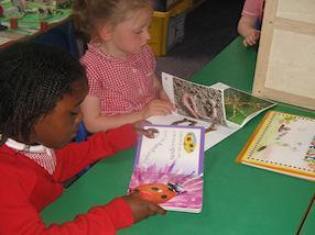 Learning about mini beasts from books.