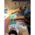 Making our Cherry Blossom Pictures