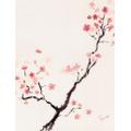 Watercolour cherry blossom