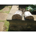 Makes bug hotels for insects
