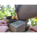 We are composting our fruit peelings