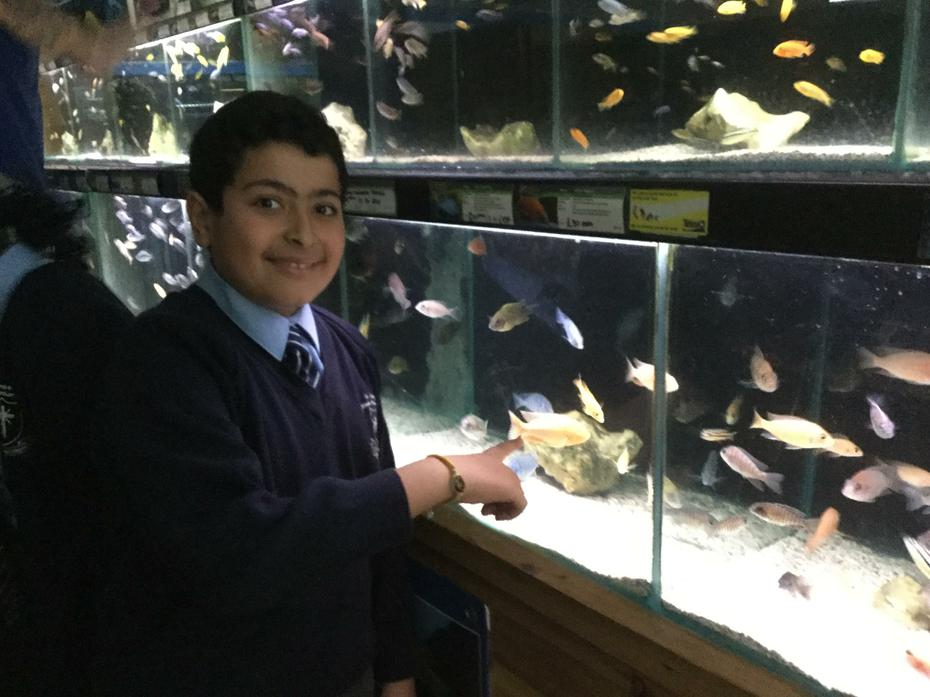 Mina was delighted to choose his favourite fish from an amazing array of fish