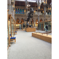 Our trip to the museum in Oxford