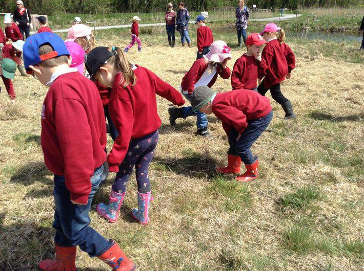 Hunting for woolly worms and learning