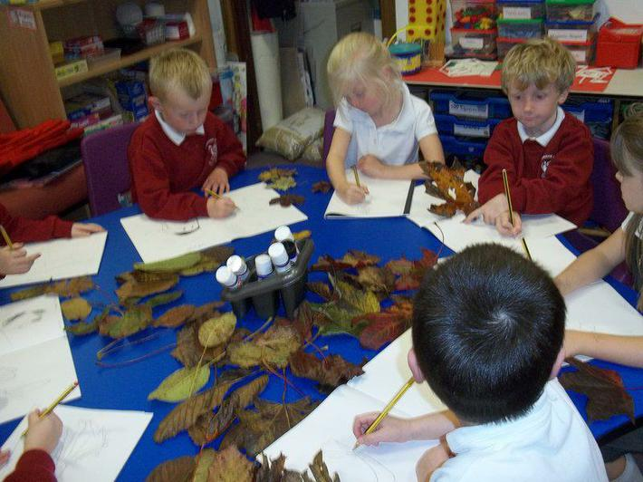 We've been learning about the seasons.