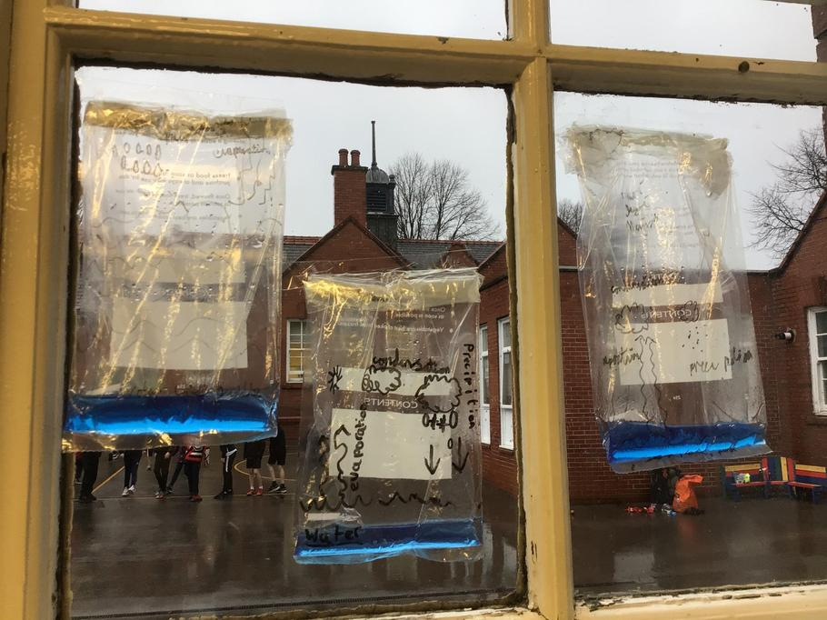 We have been making our very own water cycles!