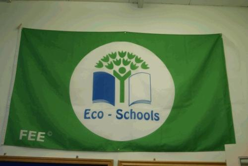 The Green Flag is displayed in our school