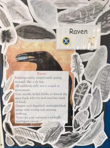 5K Raven
