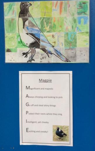 4N Magpie