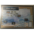 Year 4 have investigated oceans in Blue Abyss.