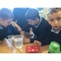 Looking at irreversible and reversible changes in Science.