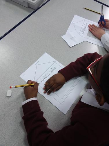 We began Science Week discussing what plants need to grow.
