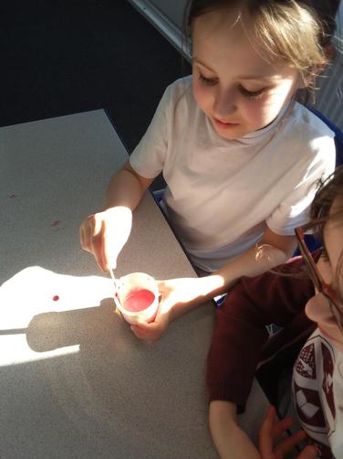 We added baking soda, food colouring, dish washing soap and lemon juice to our concoction.
