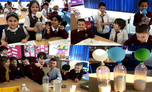 Year 2 tested if yeast was alive or dead.