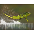 A Jesus Lizard - they can walk on water.