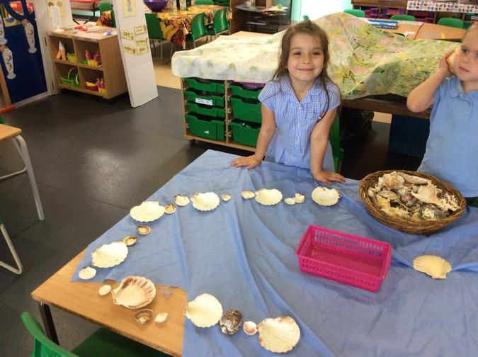 We made repeating patterns using shells.