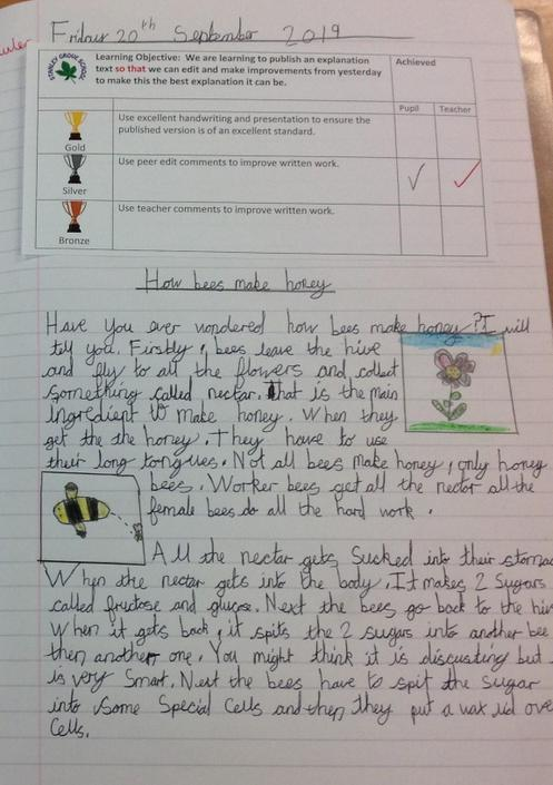 Report about bees and honey