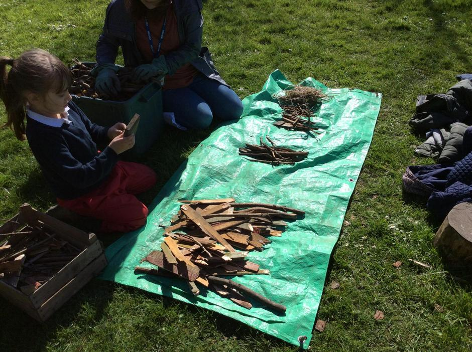 Ordering sticks for the camp fire