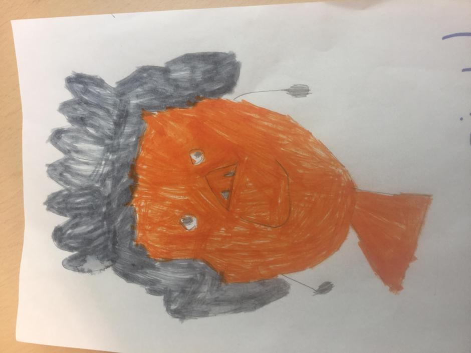 Pictures from KS1
