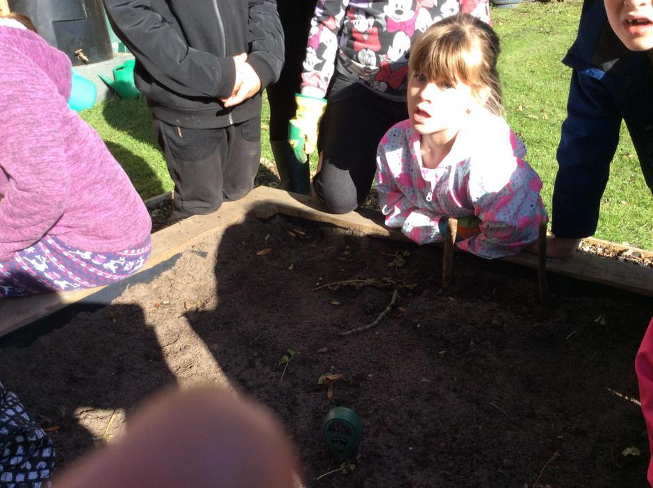 Measuring soil pH