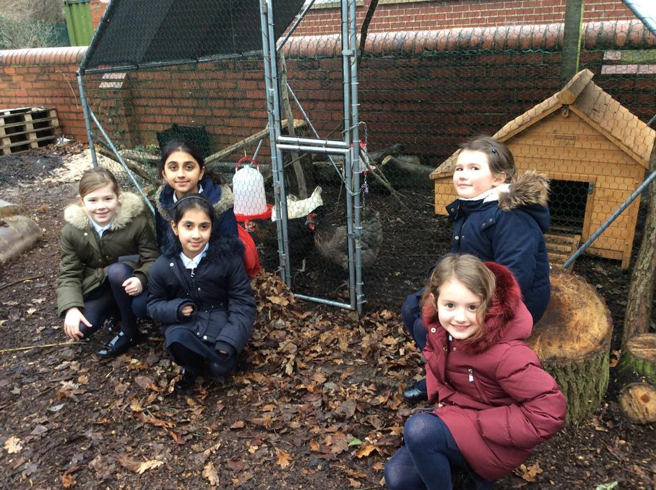 Our first 'Cheery Chicks Care Team.